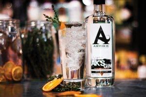 arbikie gin and tonic