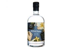 Wild June Gin, artisan gin, gin club