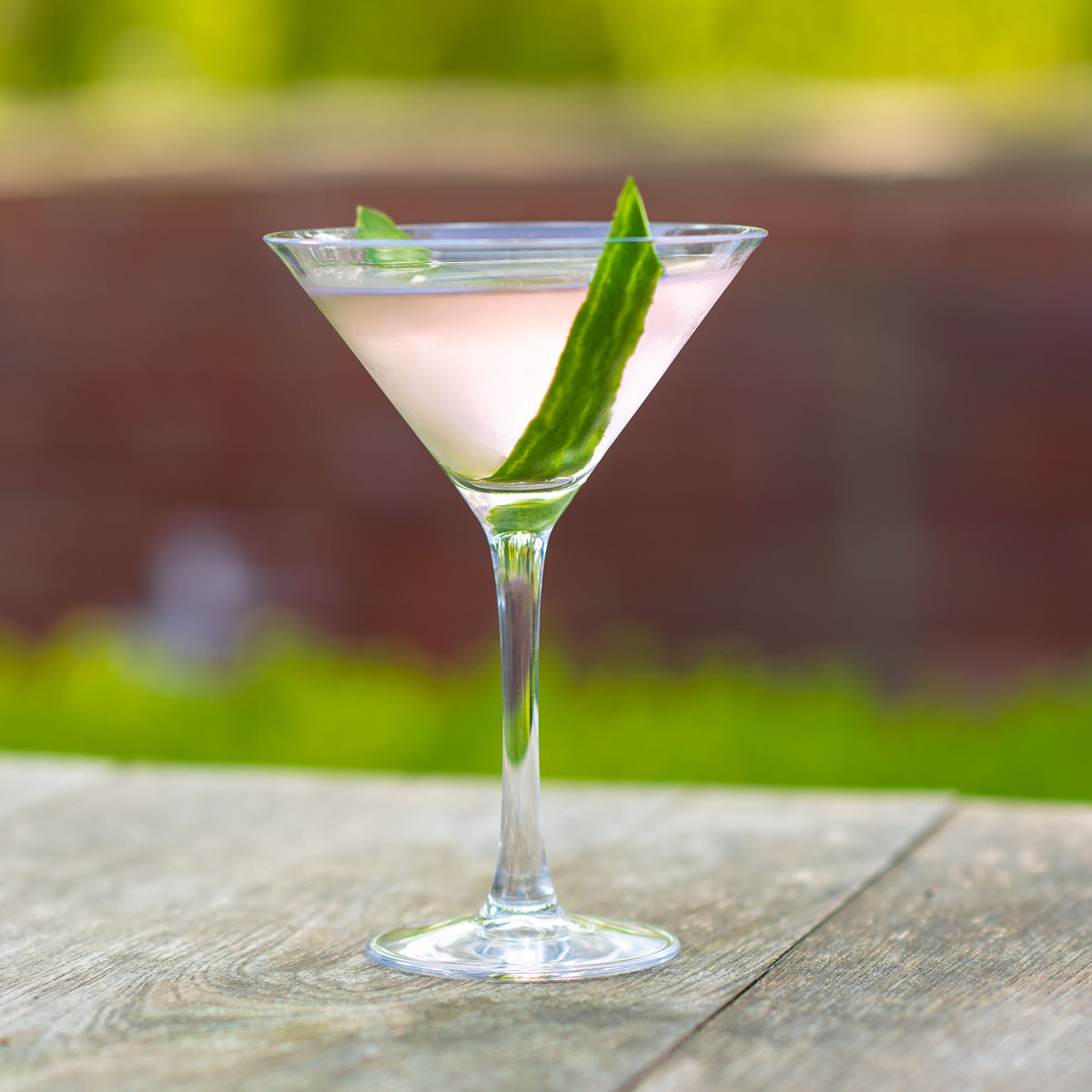 Pink Gin Martini Cocktail Recipe