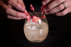 Smells Like Birch Spirit Gin Cocktail