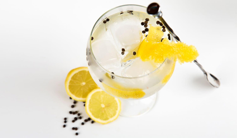 Gin Tonic Jokes