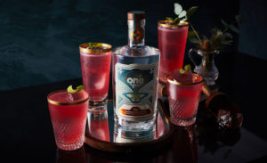 Floradora Gin Cocktail 2021