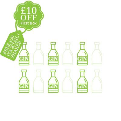 Best Gin subscription club 2019, think gin club, bi-monthly box